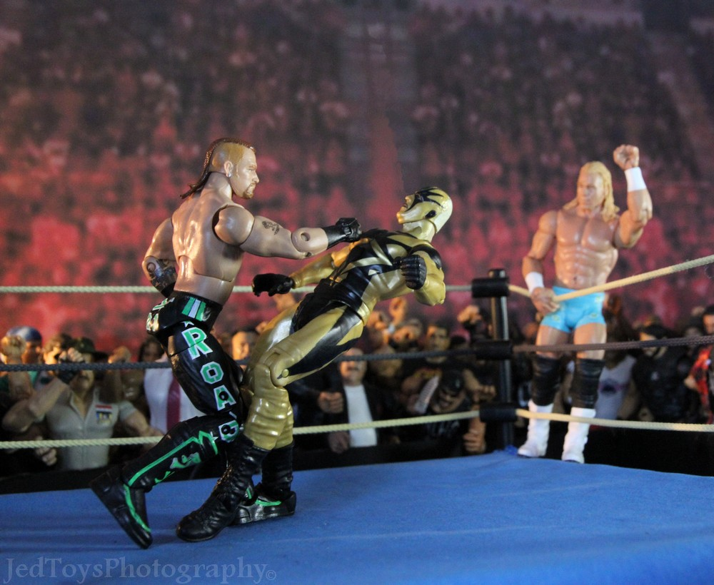 WWE Elite Collection Serie 26 (2013) 009_ro10