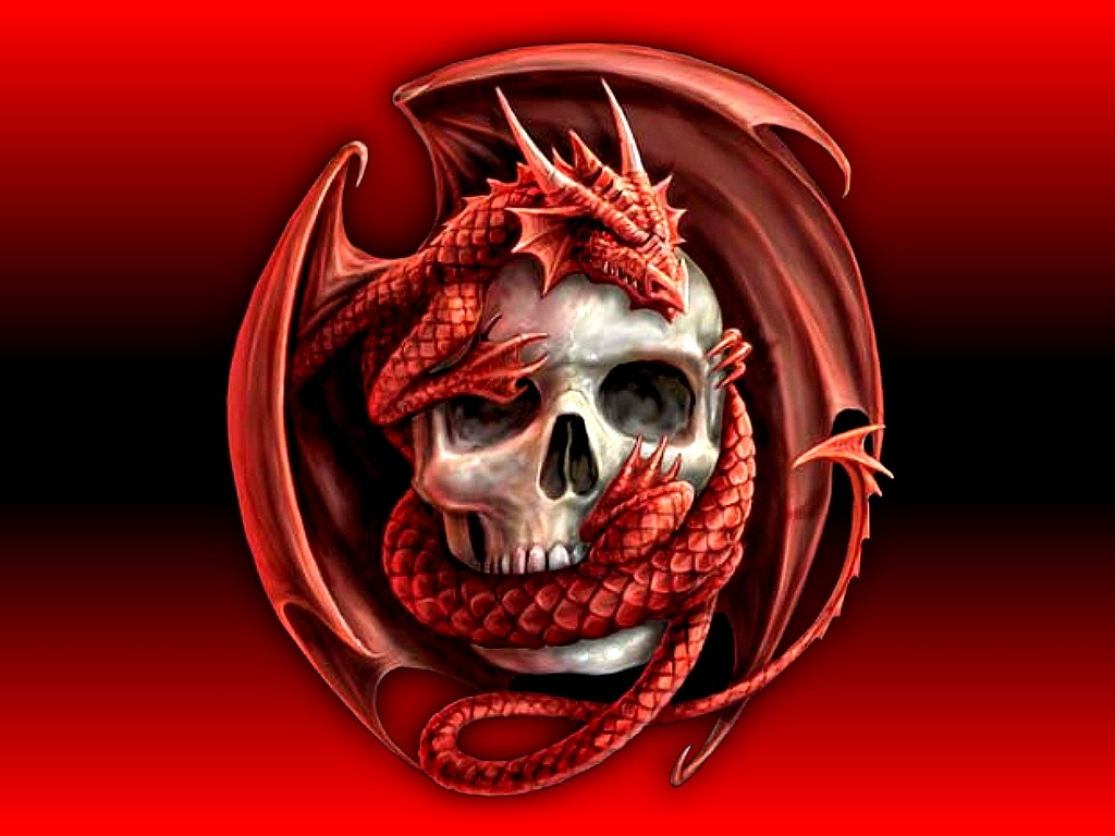 Le dragon... Dark-s10