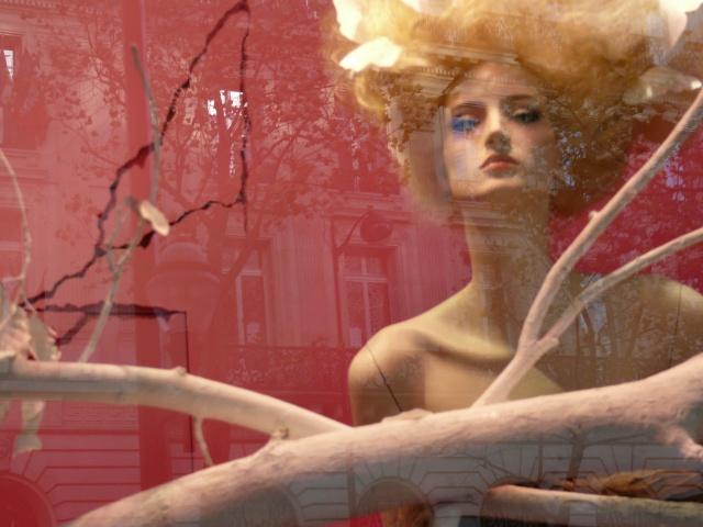 traitement hardos aux galeries lafayettes Paris_13