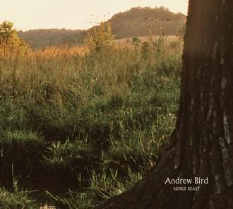 """Andrew Bird's new album: """" NOBLE BEAST """" Nobleb10"""
