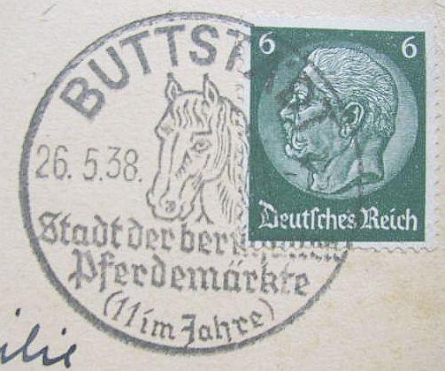 Motiv Pferde / horses Pferd411