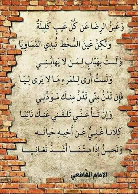 قبل أن ترحل أخي الزائر..! - صفحة 24 83027110