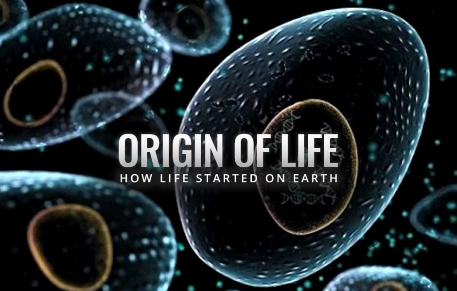 دراسة جديدة تتحدى ما قاله داروين عن بداية الحياة على الأرض Theori10