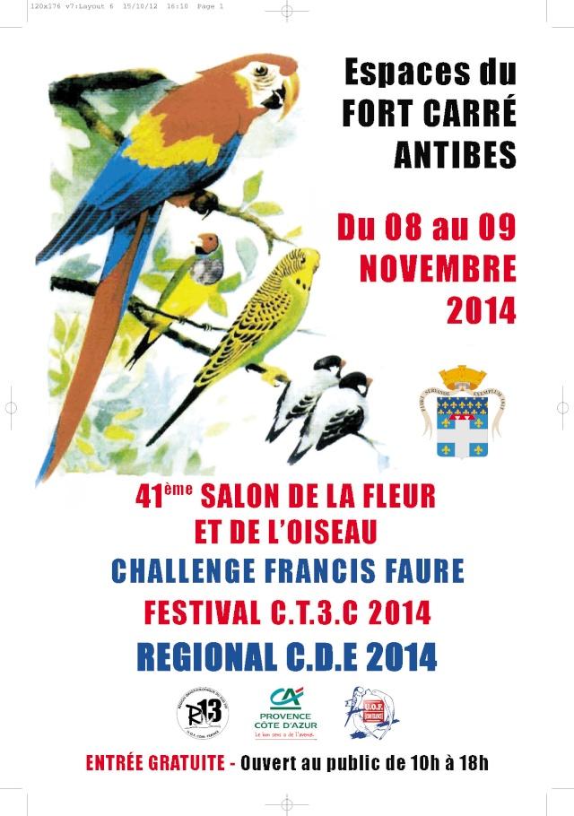 Festival CT3C Antibes 2014 13640510