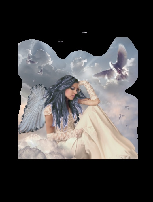 Anges & Fées _heave10