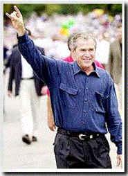 Photo symbolique! Bush310