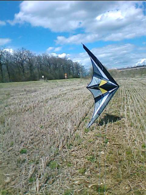 photos des kites de jéjé! Krysta10