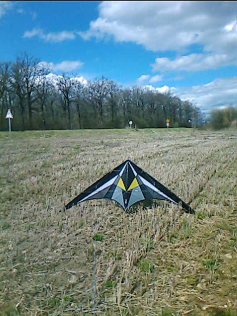 photos des kites de jéjé! Krysta11