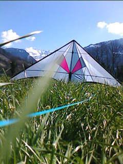 photos des kites de jéjé! Krysta13