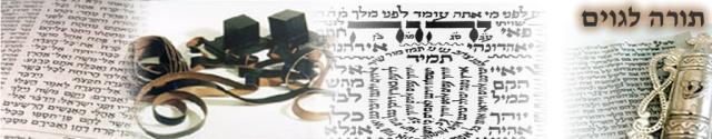 Torah Lagoym - תורה לגוים