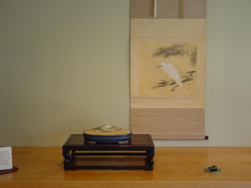 Year of the Rabbit--Natl. Bonsai & Penjing Museum (Washington DC) Dsc00027