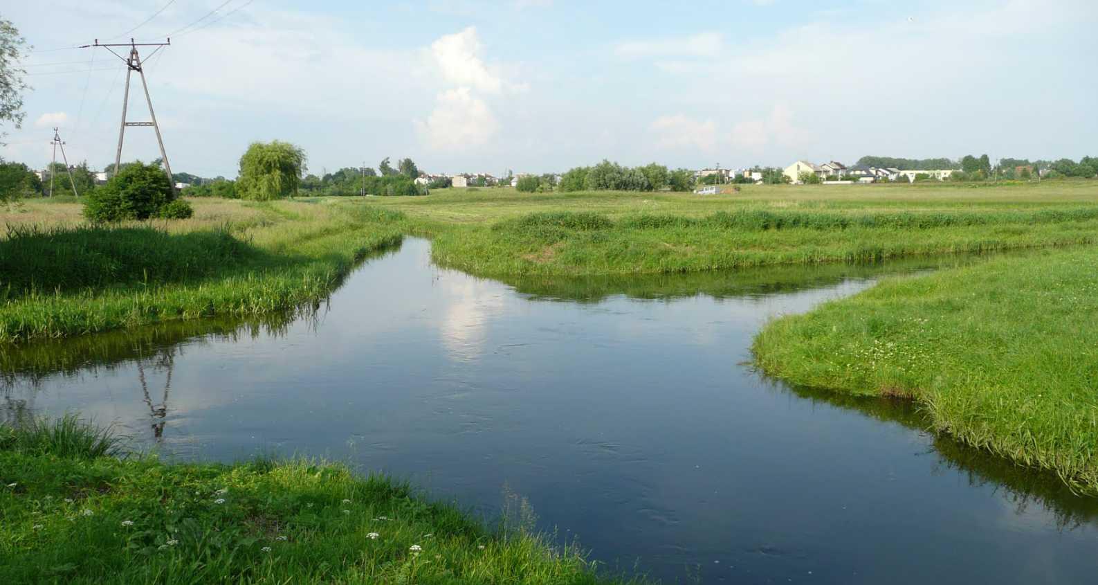 Croisement de rivières sans mélange des eaux - Wagrowiec - Pologne 2014-115