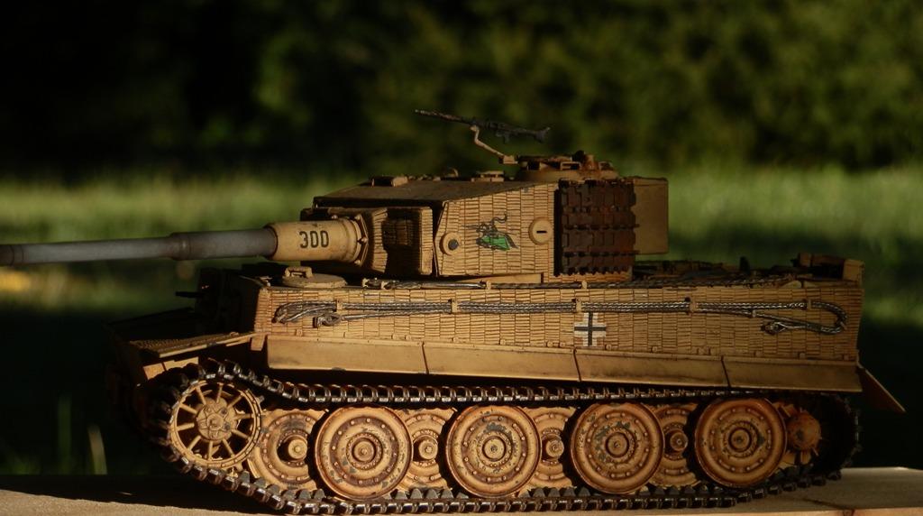 Tigre Ausf.E [Italeri 1/35 ref.6471] - Le Tigre de Mini-Rusty - Page 2 P8153211