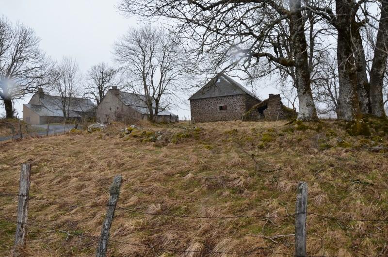 Le Cantal en 2013... Dsc_0011