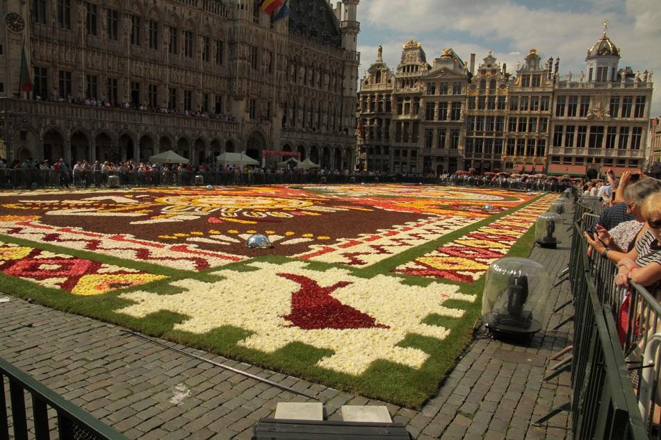 Le tapis de fleurs à la Grand place de Bruxelles Img_0010