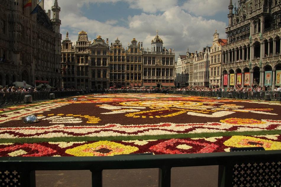 Le tapis de fleurs à la Grand place de Bruxelles Img_0011