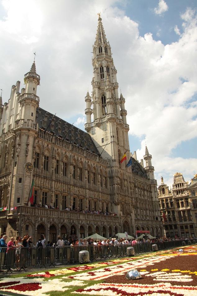 Le tapis de fleurs à la Grand place de Bruxelles Img_0012