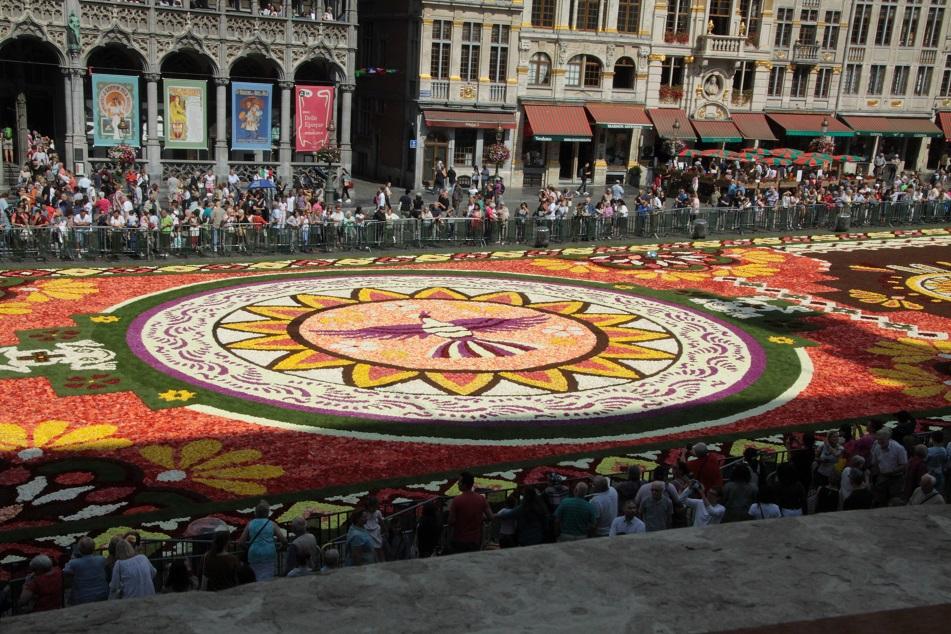 Le tapis de fleurs à la Grand place de Bruxelles Img_0013