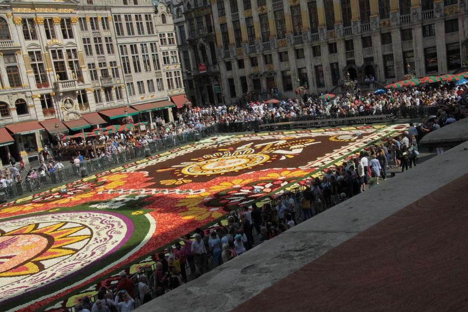 Le tapis de fleurs à la Grand place de Bruxelles Img_0014
