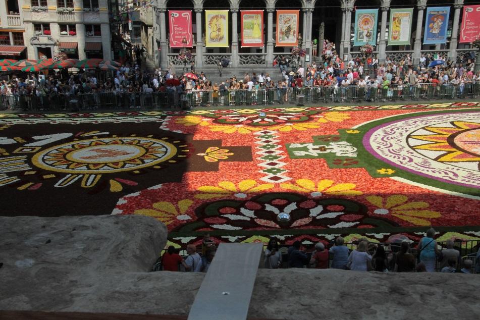 Le tapis de fleurs à la Grand place de Bruxelles Img_0015