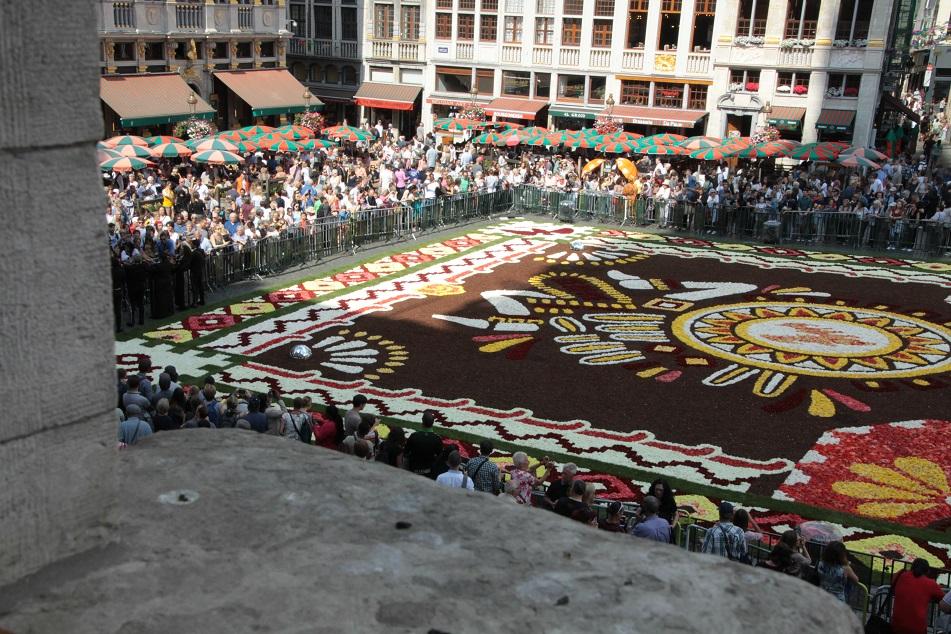 Le tapis de fleurs à la Grand place de Bruxelles Img_0016