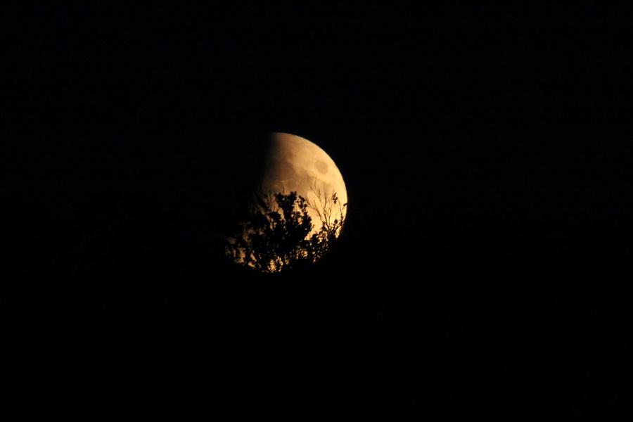 L'éclipse de Lune Joli10
