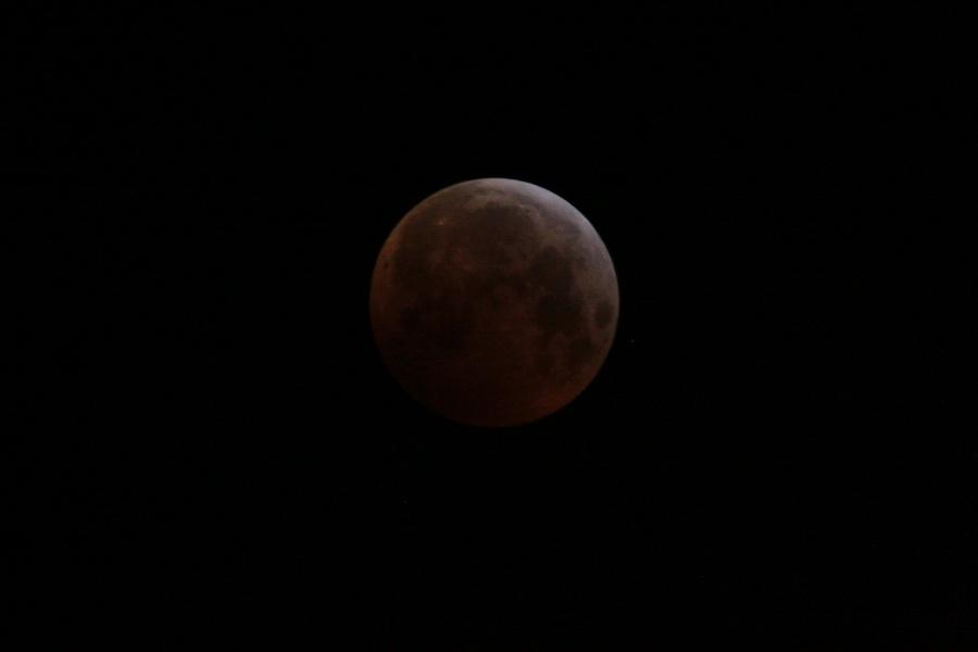 L'éclipse de Lune de ce matin Lune_016