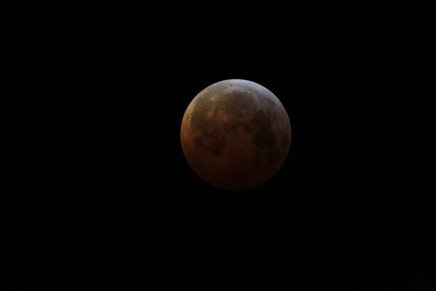 L'éclipse de Lune de ce matin Lune_110