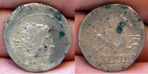 BELIKIOM 1114
