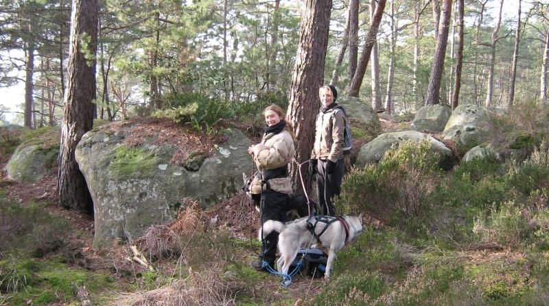 Randonnée et pic nic en foret de fontainebleau le 30 Janvier 2011 - Page 5 Img_0723