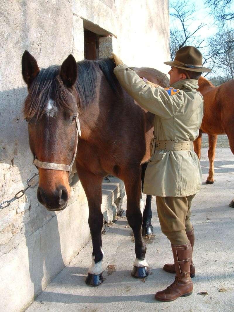 Cavalry US Dscf0020