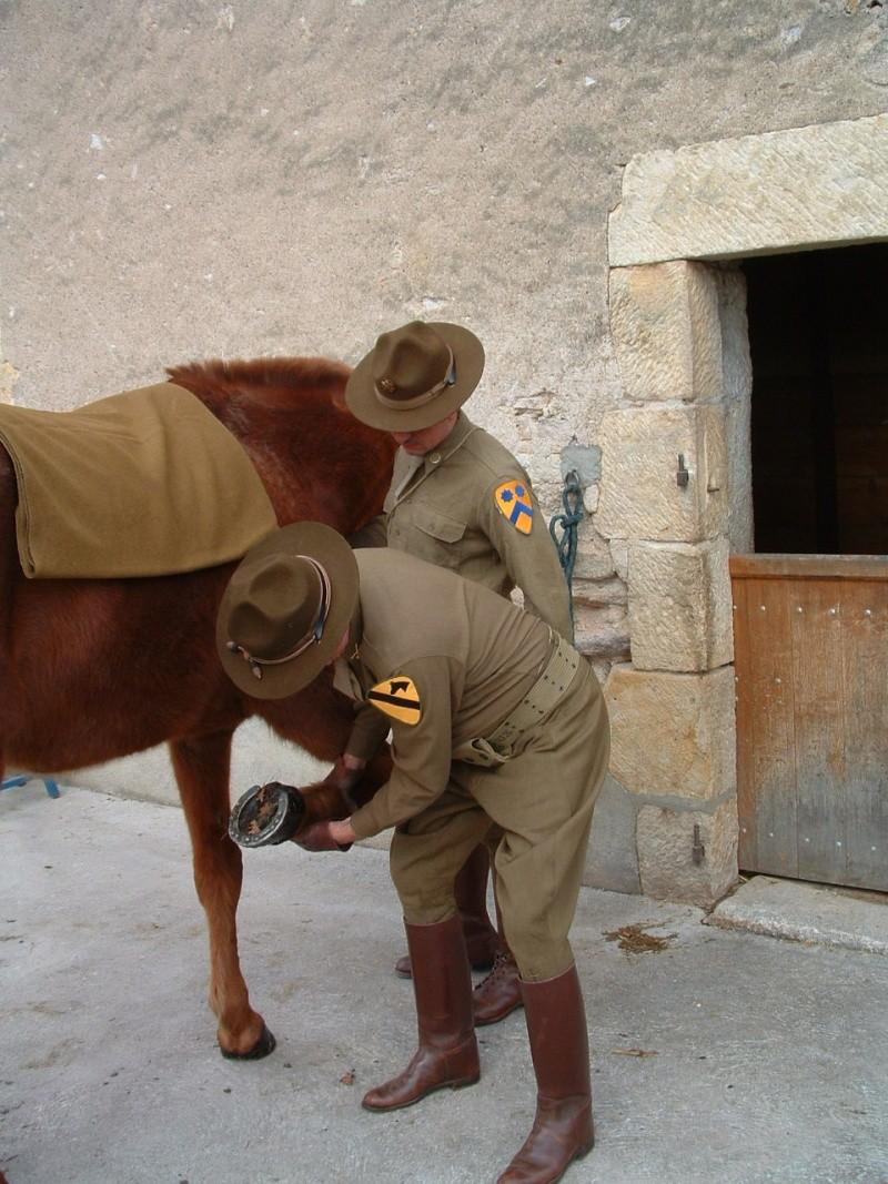Cavalry US Dscf0030
