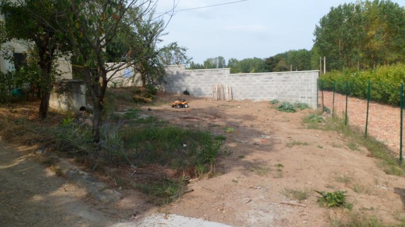 Mon jardin de fainéante Sam_0210