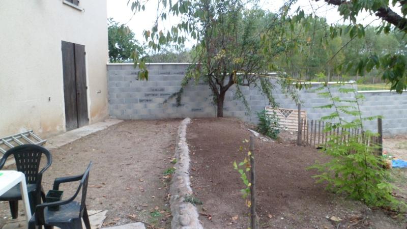 Mon jardin de fainéante Sam_0212
