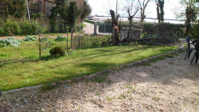 Mon jardin de fainéante Sam_0612