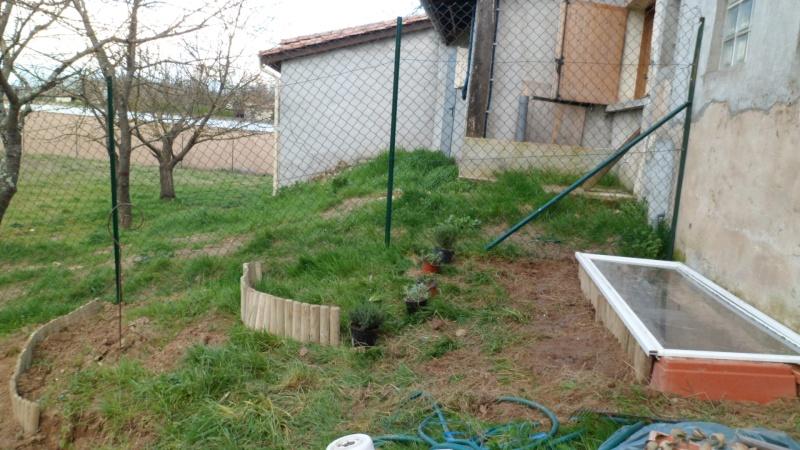 Mon jardin de fainéante Sam_0614