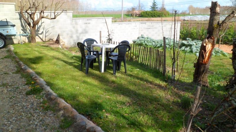 Mon jardin de fainéante Sam_0621