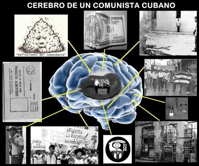 Ceerebro de un comunista cubano 40680410