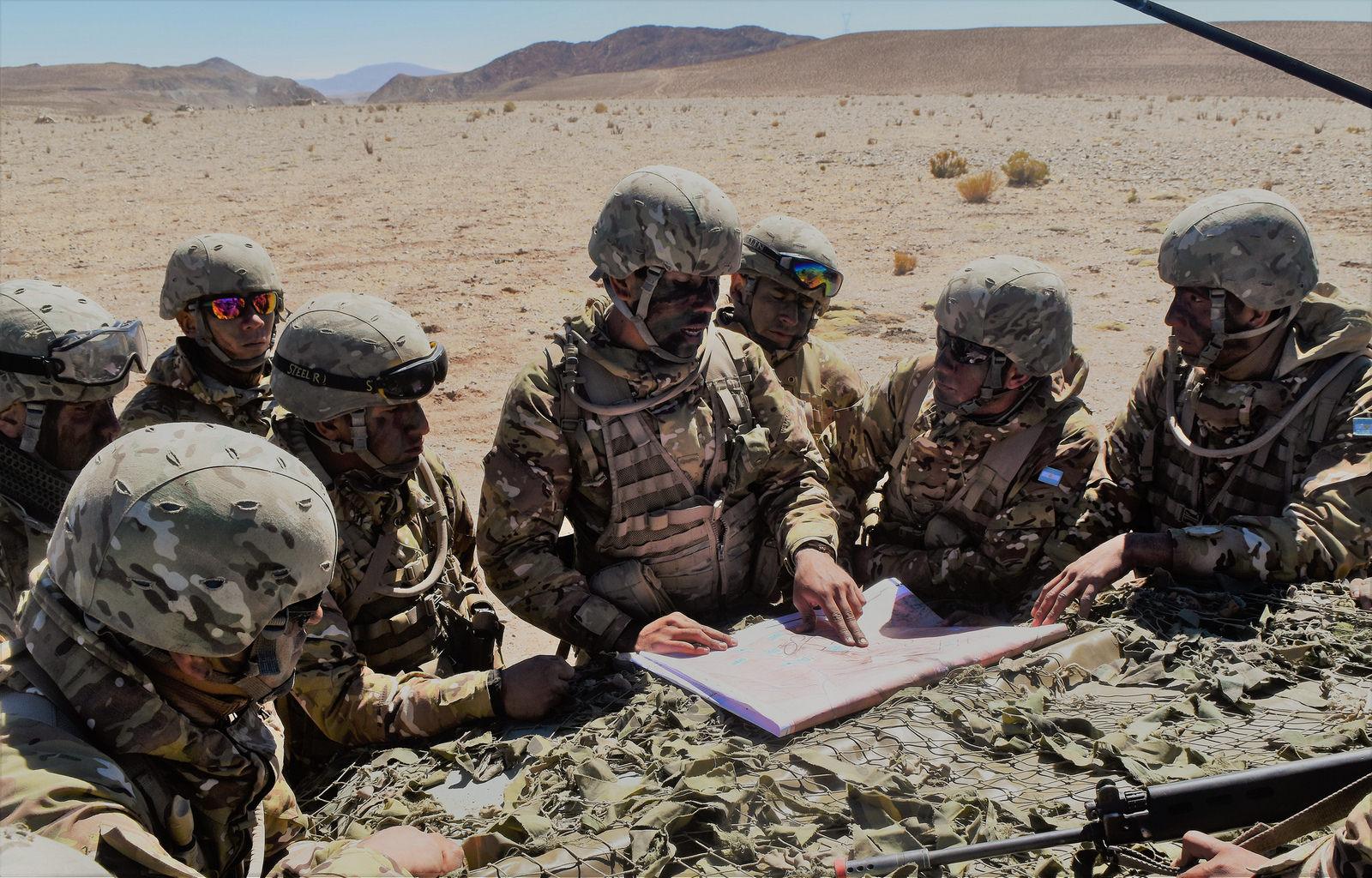 Armée argentine/Fuerzas Armadas de la Republica Argentina - Page 18 A211