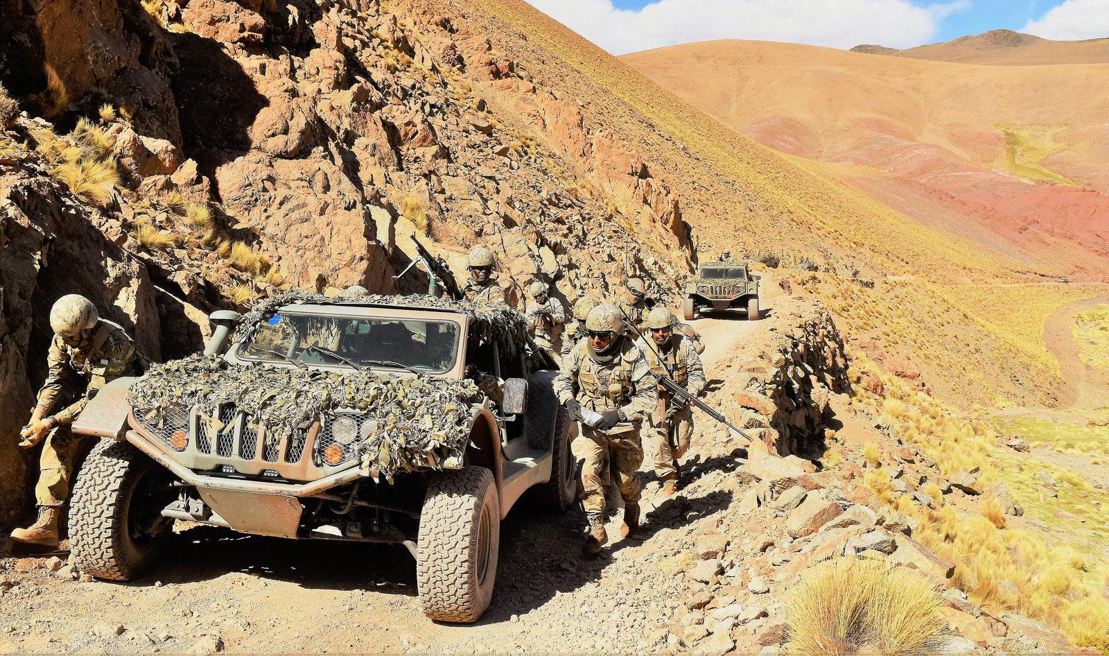 Armée argentine/Fuerzas Armadas de la Republica Argentina - Page 18 A910