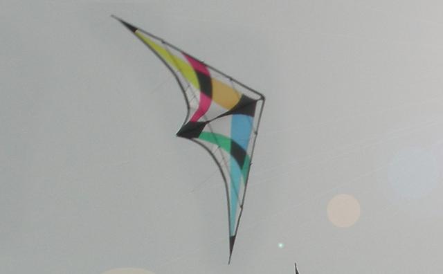 [Vendu] Moa STD & UL Moa_st10
