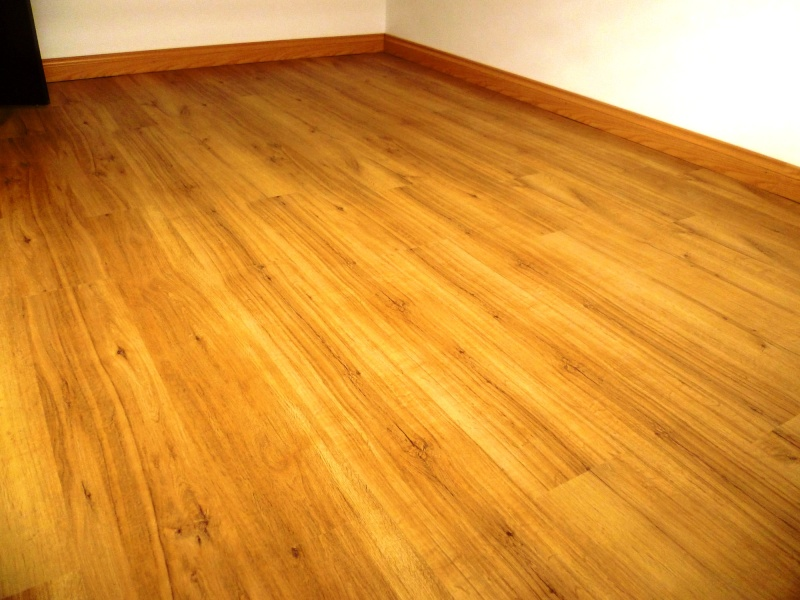 Vinyl Flooring P1000611