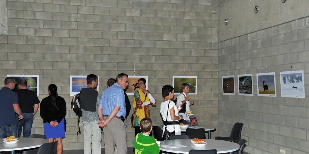 Grande exposition pour les 5 ans du forum : Photo nature du 10 au 30 Août - Page 3 Dsc_2711