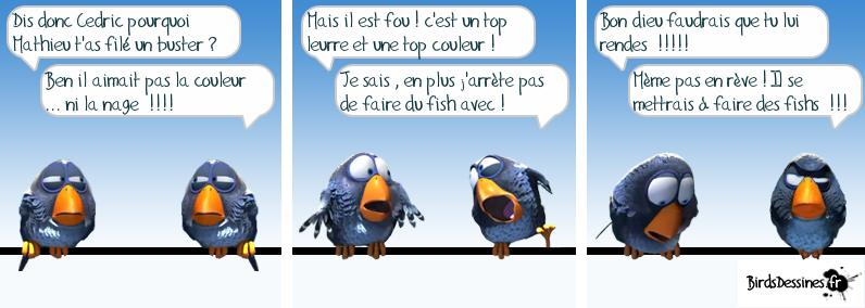 BirdsDessinés 13639710