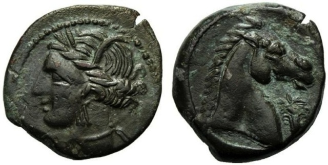 Monnaie carthaginoise (suite de mon incursion en Afrique) 74d12