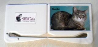 Nos produits dérivés Handi'Cats !! 1110