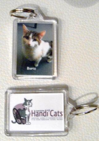 Nos produits dérivés Handi'Cats !! Gyg10