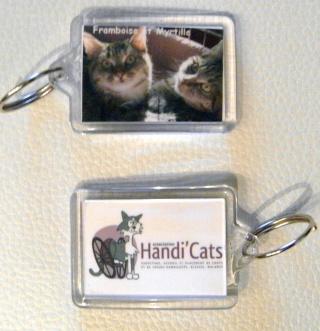 Nos produits dérivés Handi'Cats !! Rtr-110