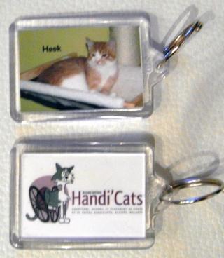 Nos produits dérivés Handi'Cats !! Vgv10