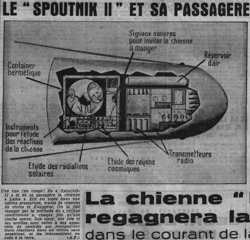 3 novembre 1957 - Spoutnik 2 - Laïka - 1er sacrifié spatial 57110610